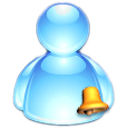 MSN MESSENGER 14.png