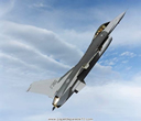 Falcon-12.jpg