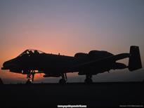 Republic_A-10_Thunderbolt_II.jpg