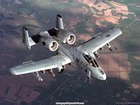 Republic_A-10_Thunderbolt_II_2.jpg