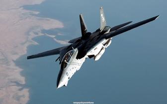_F14tomcat_.jpg