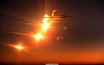 _F16__002.jpg