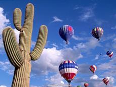 cactus_&_balloons.jpg